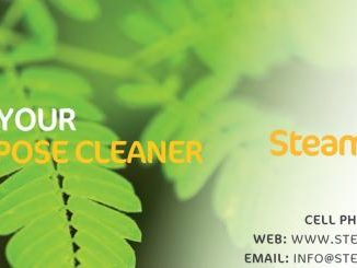 steamcleanz marlborough business details